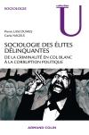 Lascoumes_sociologie_des_élites